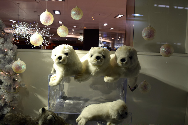 Seals in Fenwicks Christmas Window, Canterbury | www.rachelphipps.com @rachelphipps