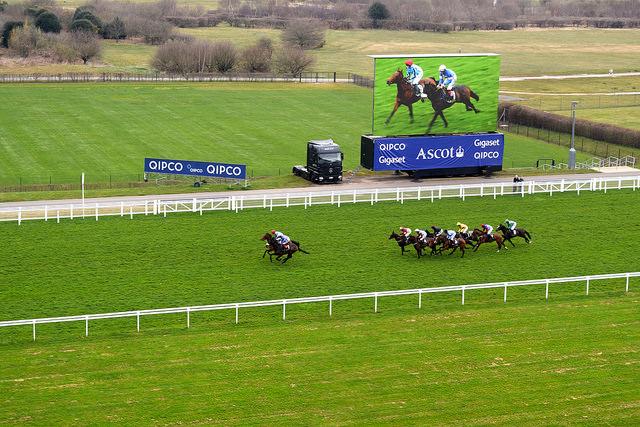 The Prince's Countryside Fund Raceday, Ascot | www.rachelphipps.com @rachelphipps