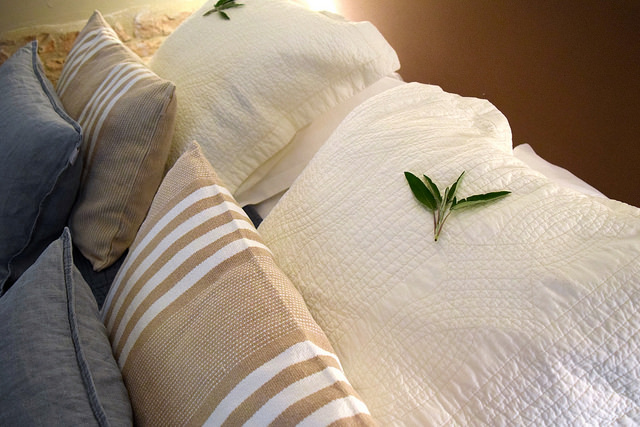 Sage on the pillows at Manoir de Malagorse | www.rachelphipps.com @rachelphipps