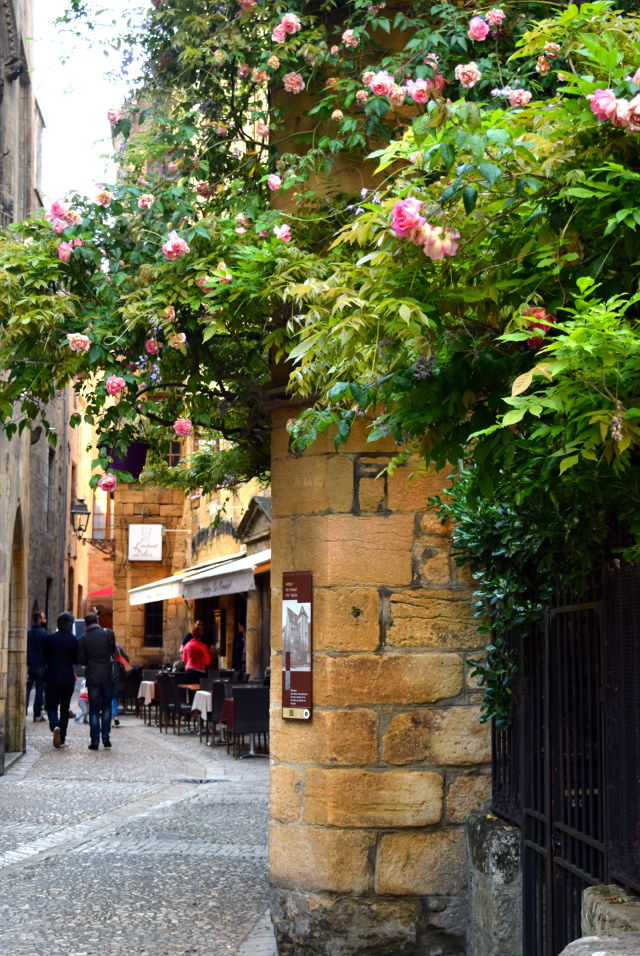 Roses in Sarlat, Dordogne Valley | www.rachelphipps.com @rachelphipps