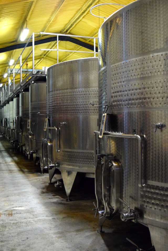 Fermentation Tanks at Chateau Panniseau | www.rachelphipps.com @rachelphipps