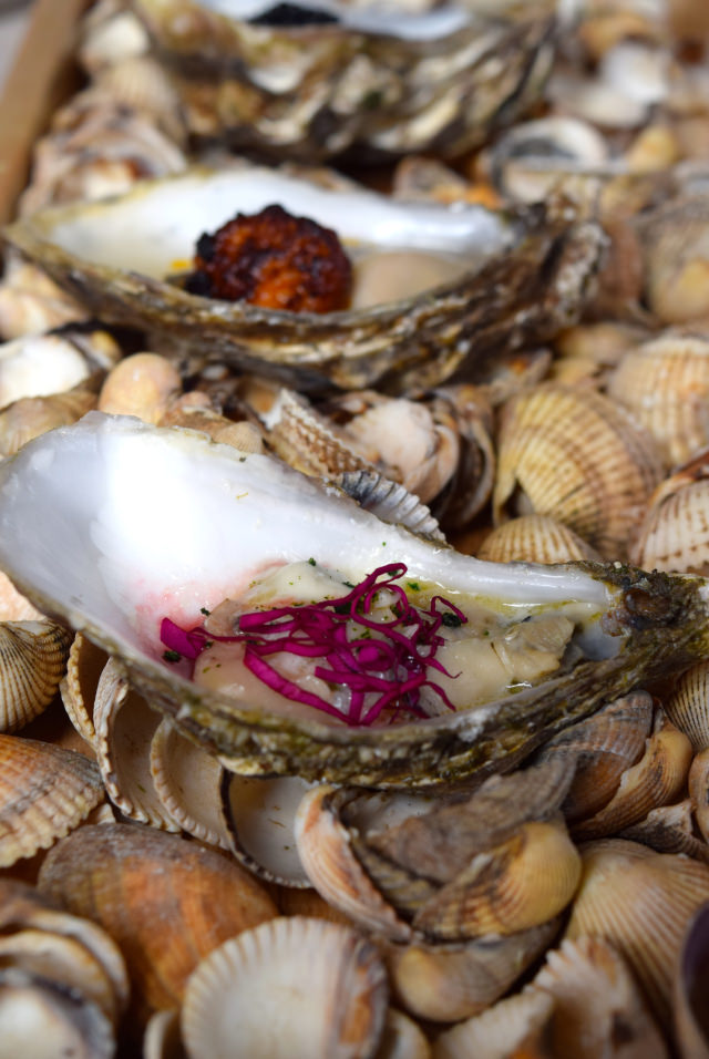 Pickled Oysters with Rose at The Sportsman, Seasalter | www.rachelphipps.com @rachelphipps