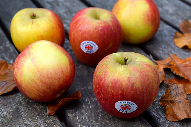 British Apples | www.rachelphipps.com @rachelphipps