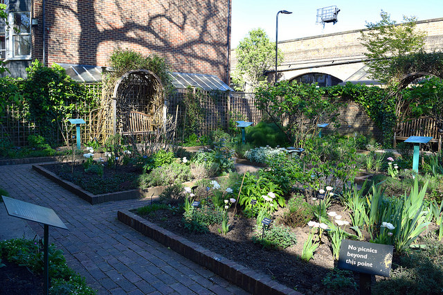 Herb Garden at The Geffrye Museum of the Home | www.rachelphipps.com @rachelphipps