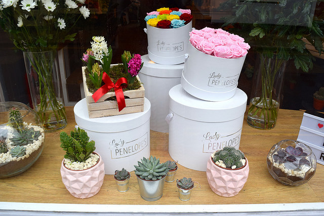 Rose Hat Boxes at Lady Penelope's, Canterbury