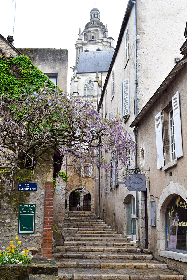 Wysteria in Blois, Loire Valley #loire #france #travel