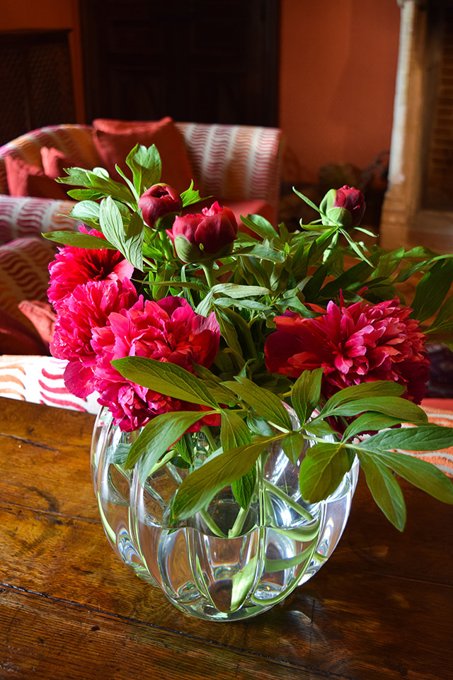 Fresh Peonies at Chateau de la Treyne