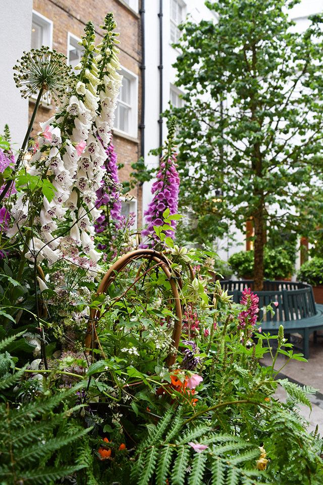 Garden at La Goccia, Covent Garden #flowers #coventgarden #london