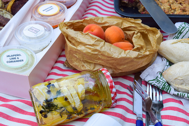 Summertime Picnic in the Park