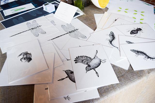 Illustrations at Wealden Literary Festival 2018