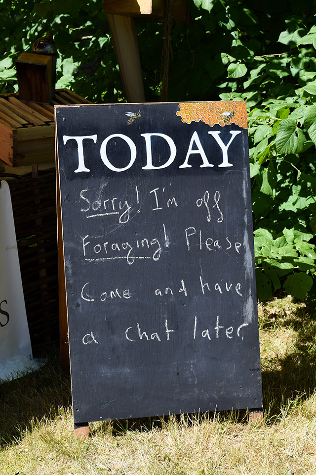Foraging at Wealden Literary Festival 2018